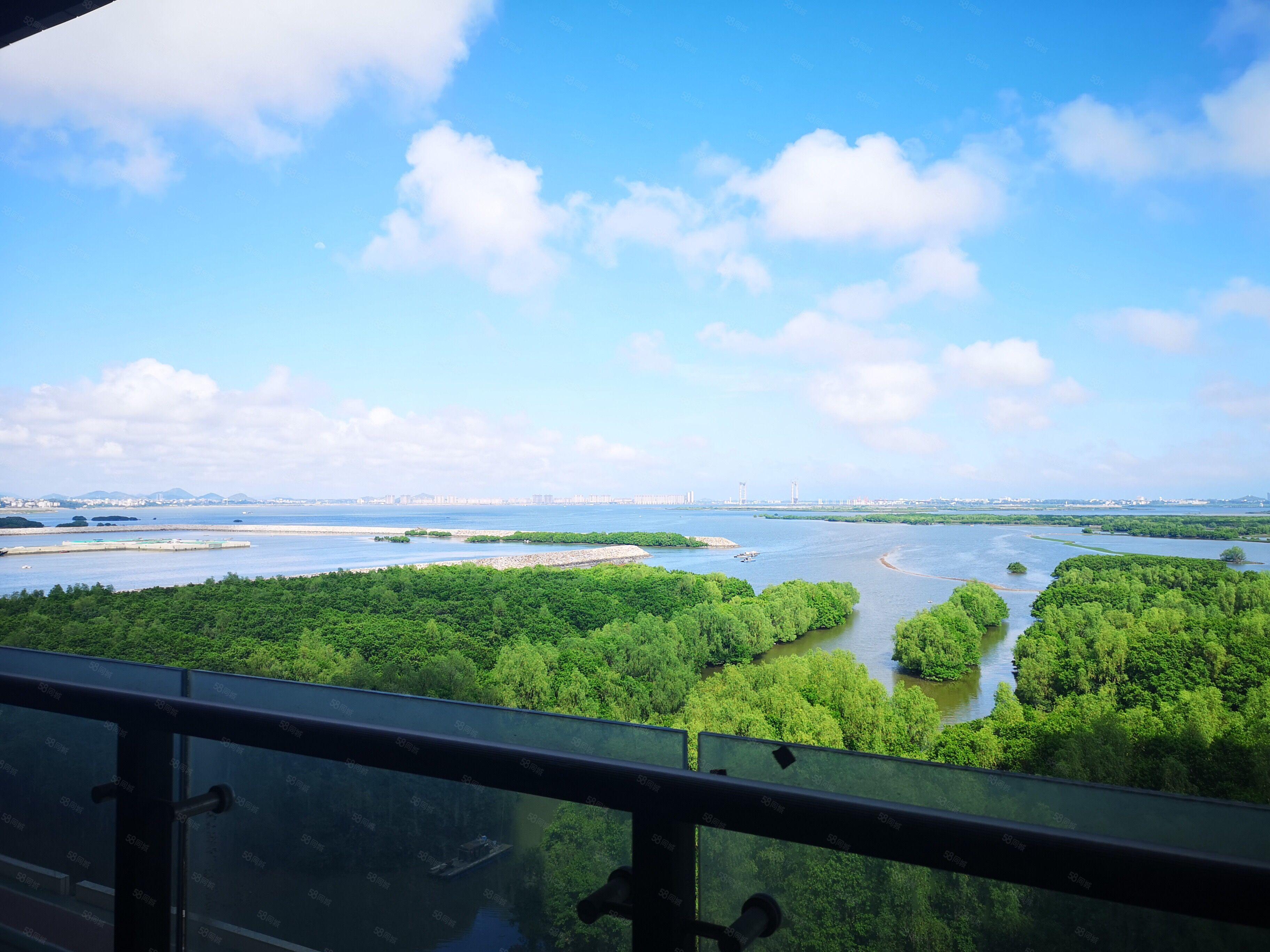 星荟湾海景房,阳台可直接观看到万亩红树林景区,四房两厅三卫。