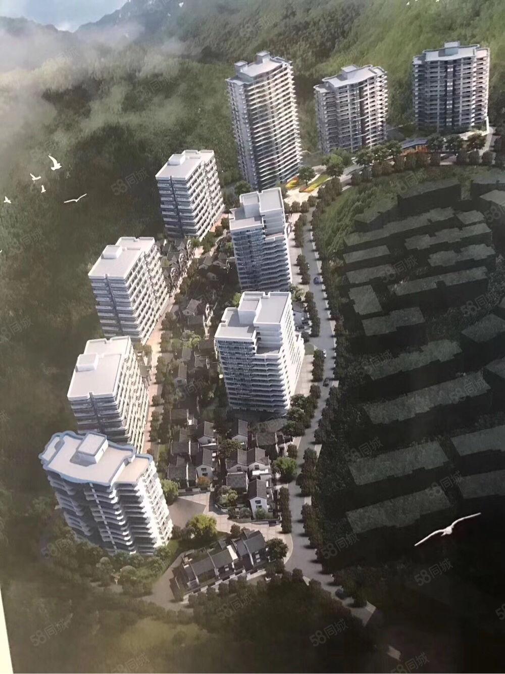 抚仙湖地标建筑门户位置住宅,南北通透,交通便利