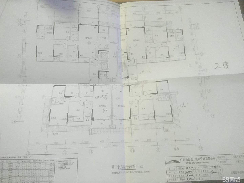 印象巴马,现房住宅,三室两厅。