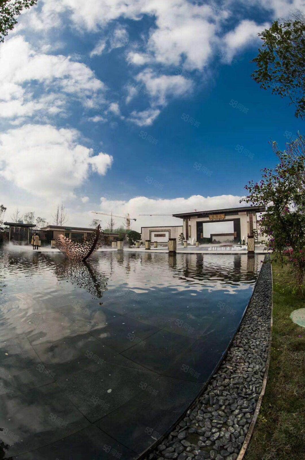 鷺湖云錦臺標準大三房南北通透內外雙公園