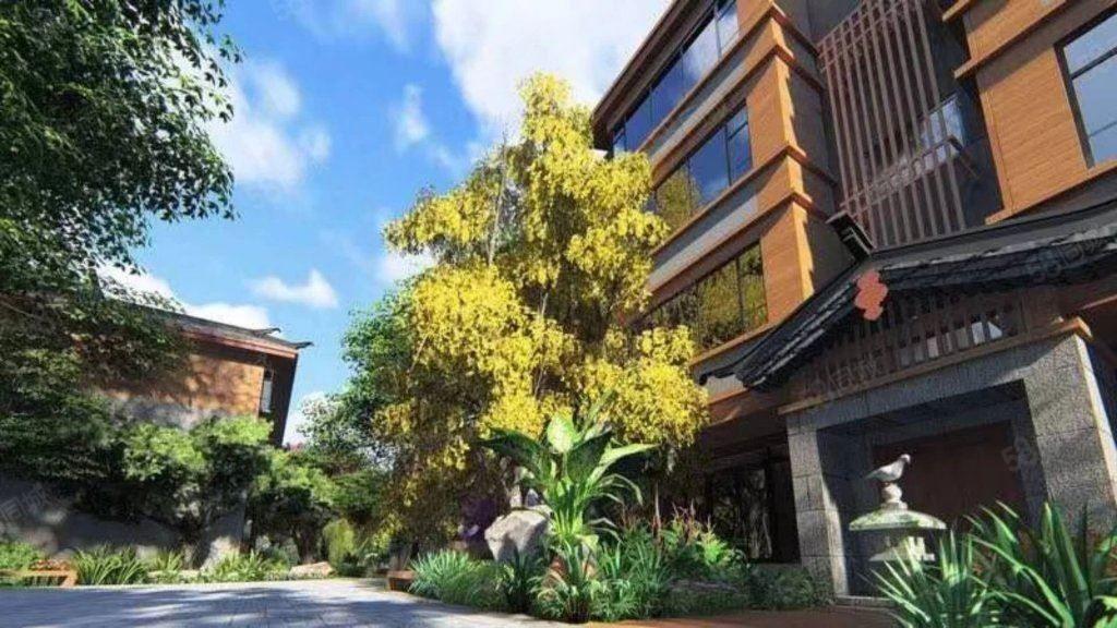 丽江古城旁边绿景家园10年回本70年产权精装托管公寓