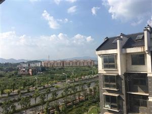 高铁新城区绿地环绕城对面商业街田中湖散步房东抛售价!
