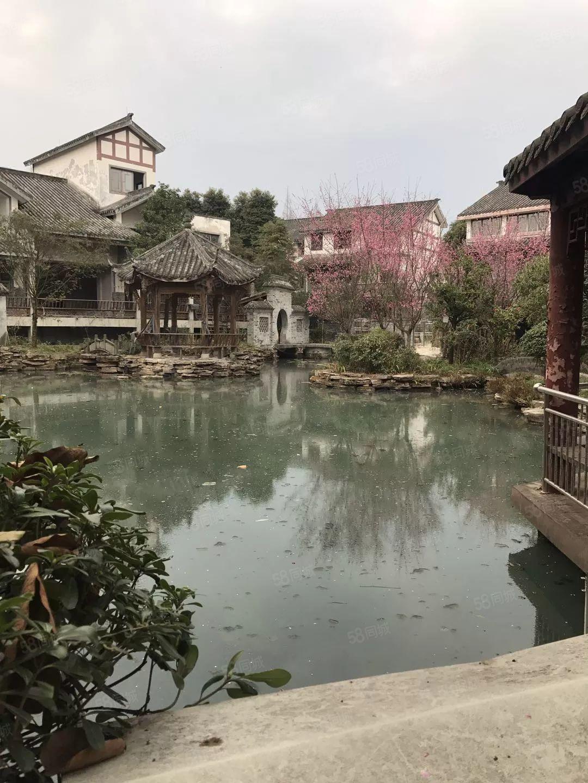 碧水青城小区唯一一套低于市场价的房源,只卖3天,错过就没得