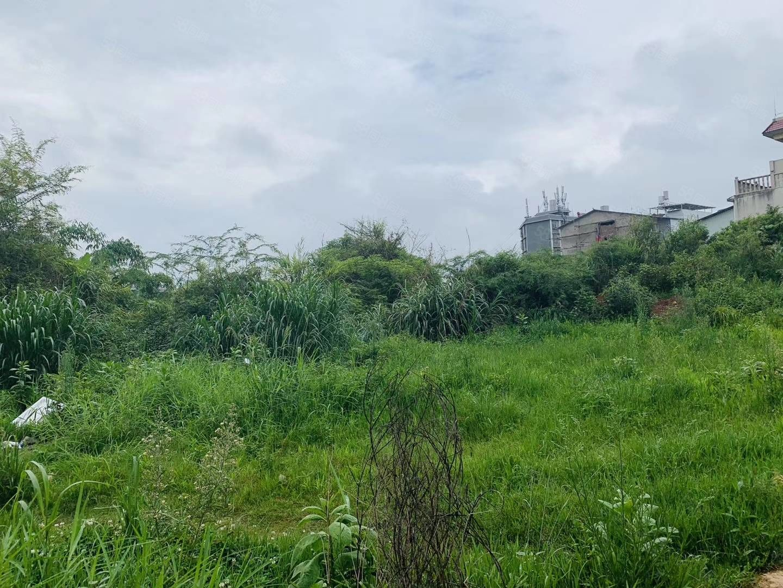 刀官寨旁国有土地出售带花园停车位独栋别墅