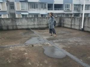 全现浇清水房房东降价急售送80m大花园