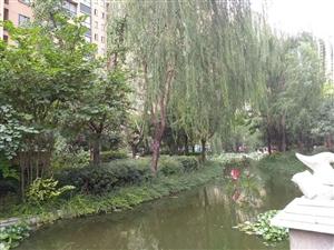 沱河之畔中阳嘉园三室精装南北通透首付35拎包入住