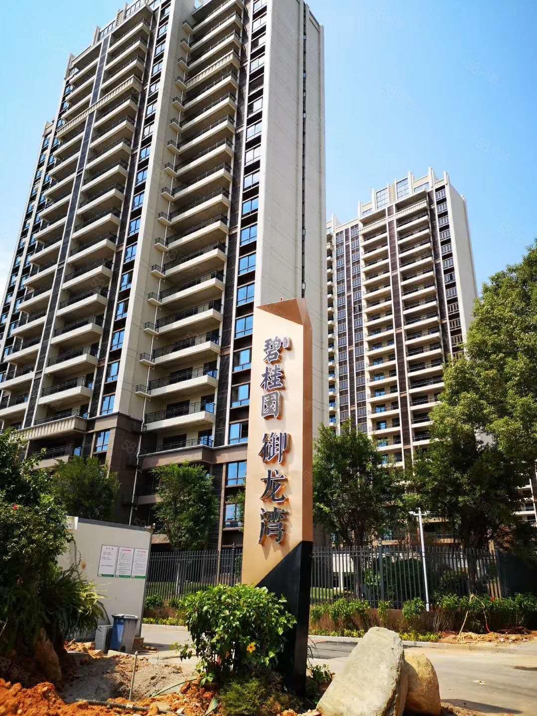 碧桂园多套套房出售,毛坯房,小区完整,电梯高层。