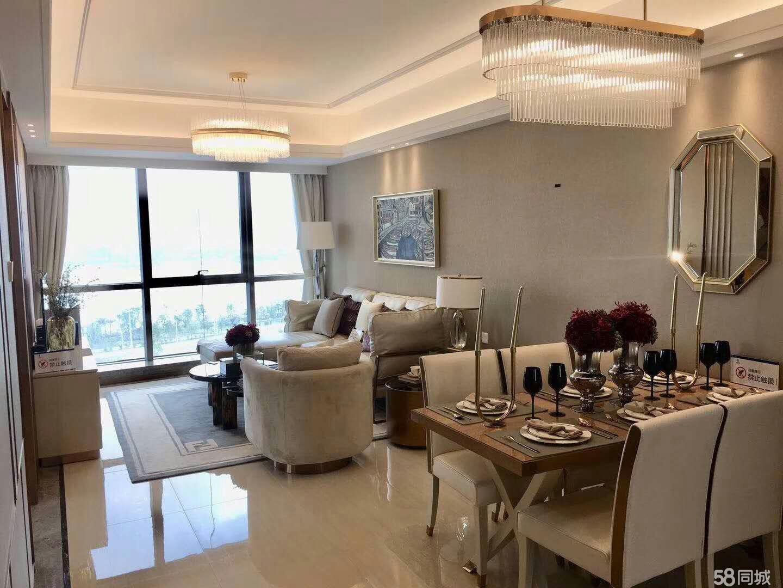 大湾区精装修洋房、高铁新城区、现均价8500