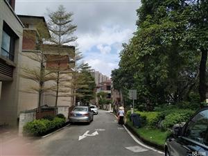 阳东稀缺半山四季独立别墅5室2厅5卫427.87平米
