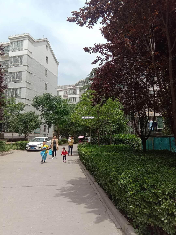 望贤路紫韵东城二期小高层精装两室无公摊可贷款无大税