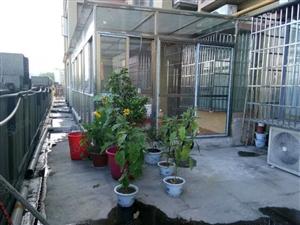 (澳门网上投注赌场平台爱家)凯旋城超大花园可使用大三房房东诚心出售