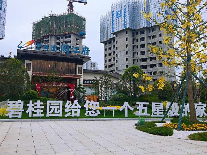 碧桂园阅江府促销特价7200每平原价8000每平