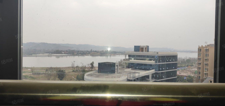 南门国滨首府,两房两厅两卫,全江景房,87.8万可谈
