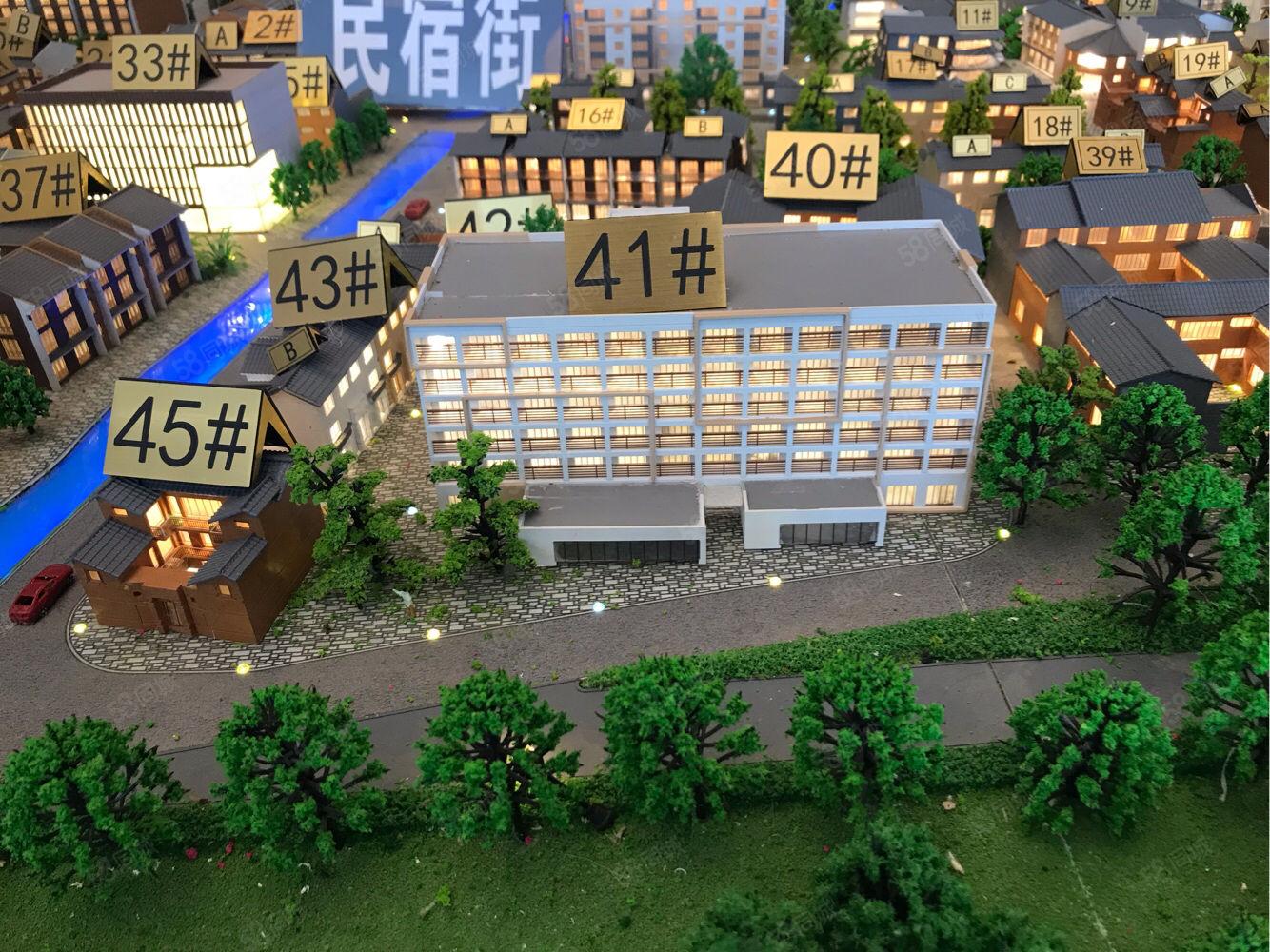 抚仙湖门户位置小镇一线湖景公寓,精装修