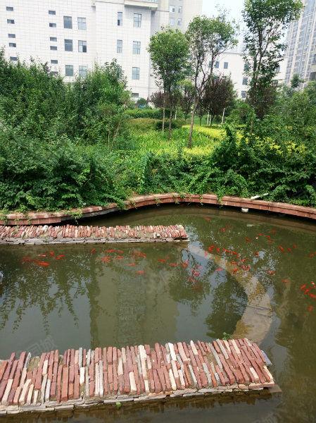 京林理想城3室2厅150平毛房含费地暖72万