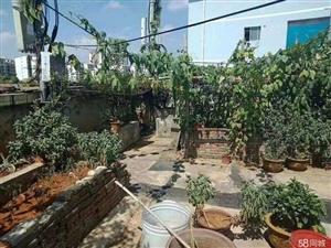 万博邮政宿舍带90平花园,自家享用,户型方正,出行购物方便