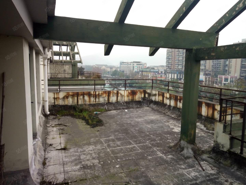 世居,美丽洲顶跃,带屋顶花园,双证满,只卖一周,五期震后房