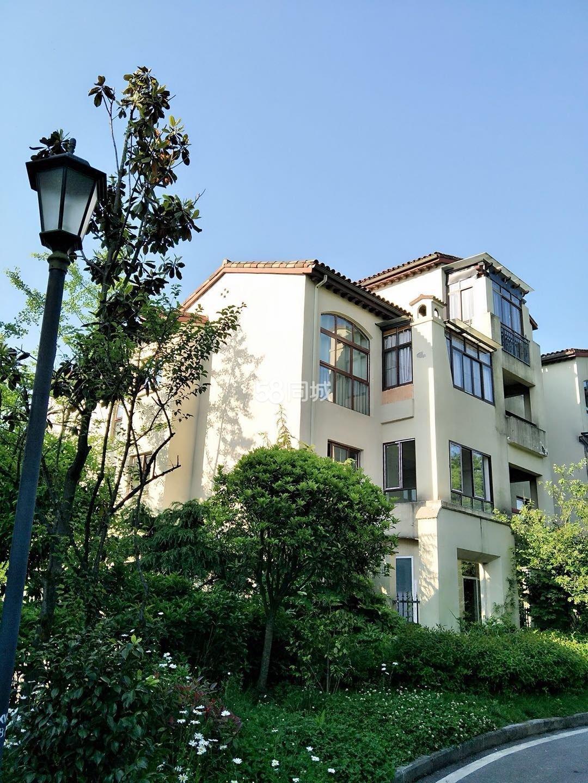 仙女山品质避暑洋房花漾山谷4室2厅2卫