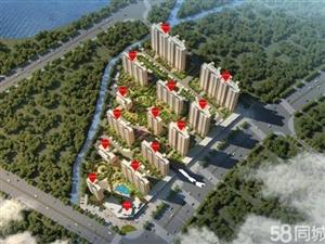 淅川碧桂园,世界五百强房企