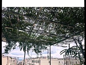 湖滨路新天地小区复式房带车库带空中花园