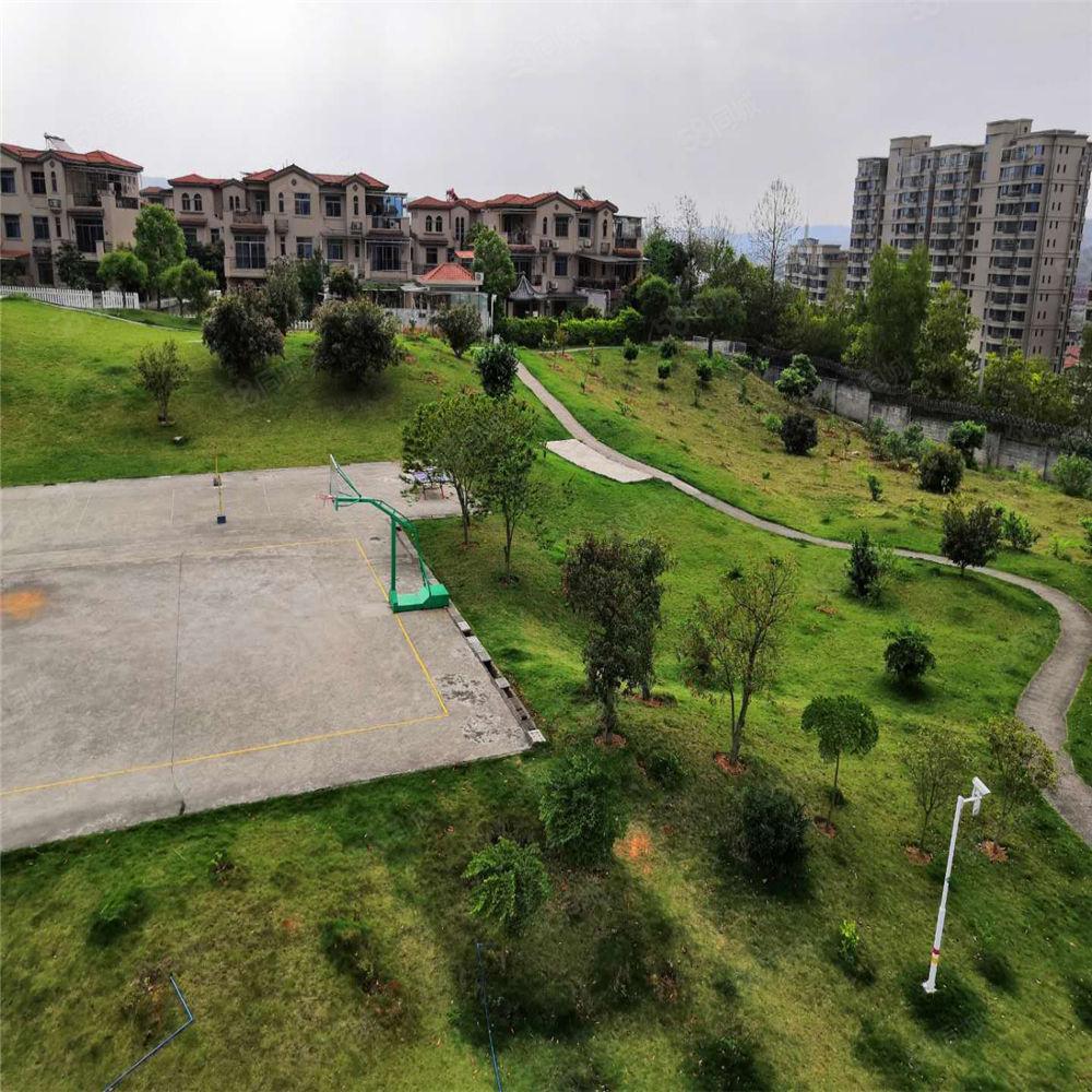 碧桂园凤凰城联排边房别墅229方南向4房,带天井露台环境宜人