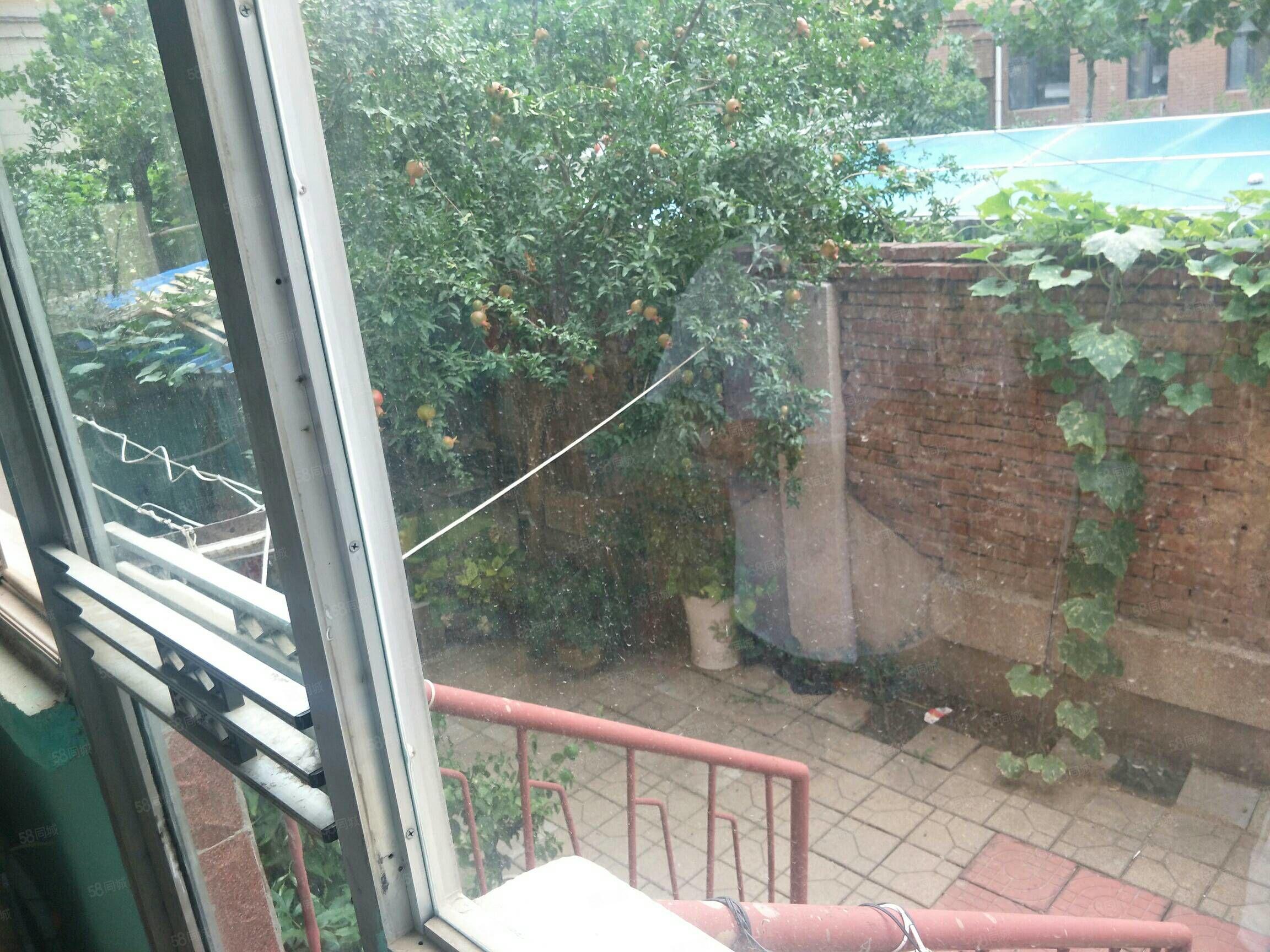三友玫瑰園內家屬院一樓帶院,三室兩廳上學方便東郡一小新華一中