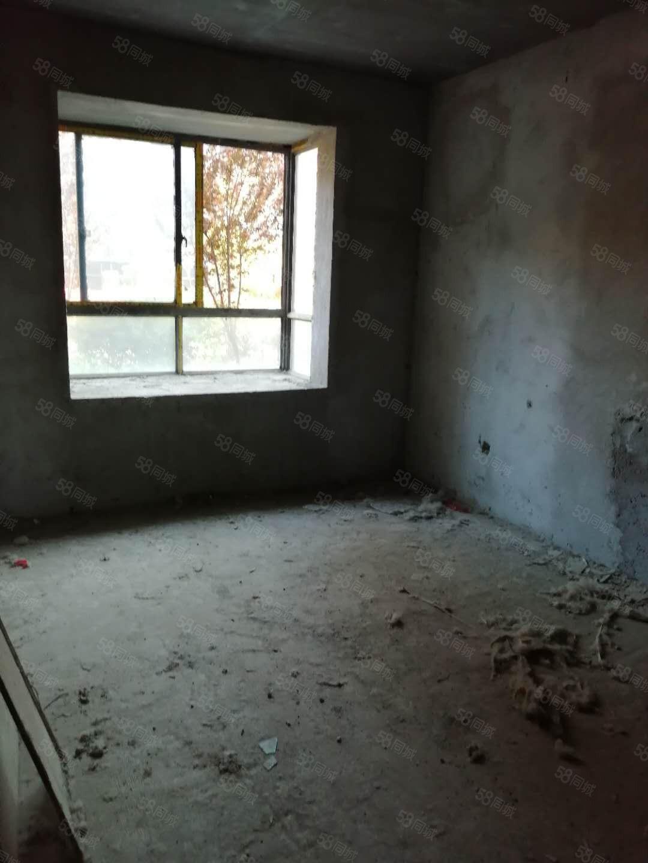 鸿博家园一楼带院能按揭南北通透户型方正欢迎咨询看房