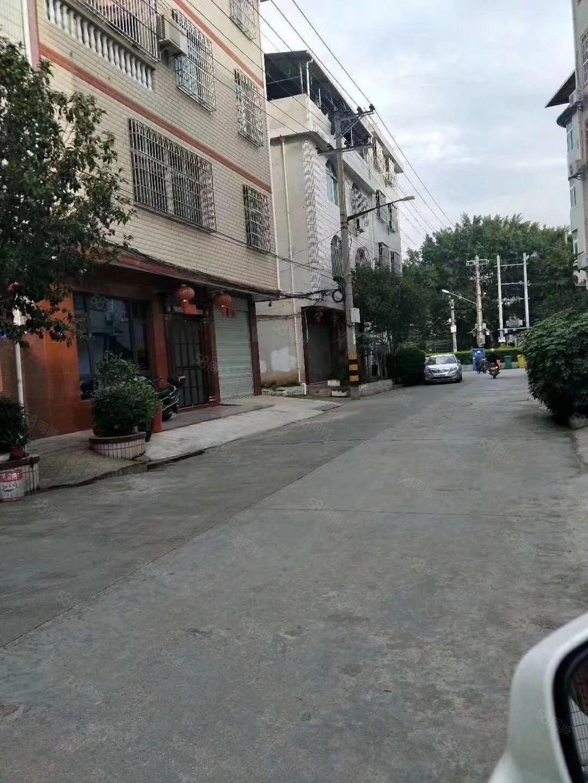 东门振昌路栋房出售,就读东幼、东小、三中,
