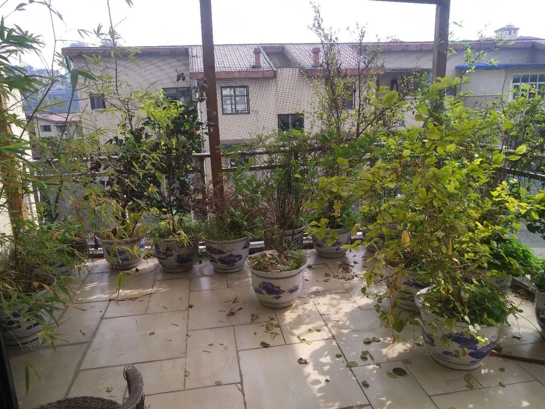 A城北,天立学校旁,实木家具,中央空调,带两个露台花园!