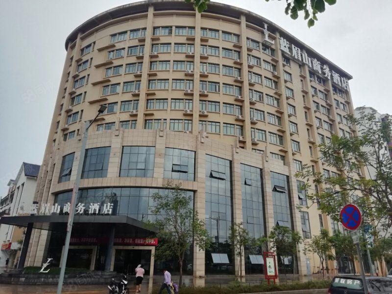 蓝莓山四星酒店式公寓出售