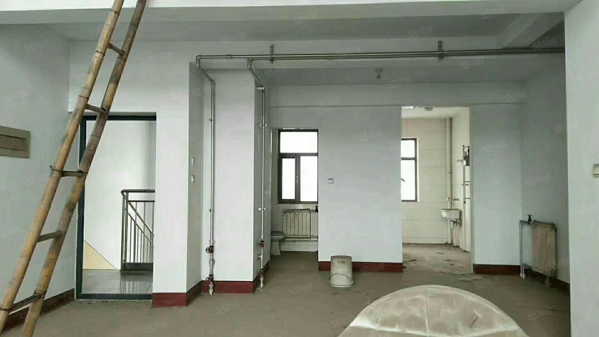 濱河花園復式房230平毛坯,帶儲藏售80萬