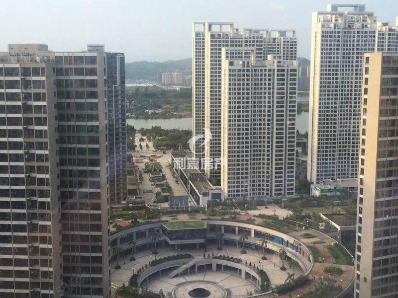 天茂城市广场、标准三房、南岸商圈、电梯高层、视野无敌