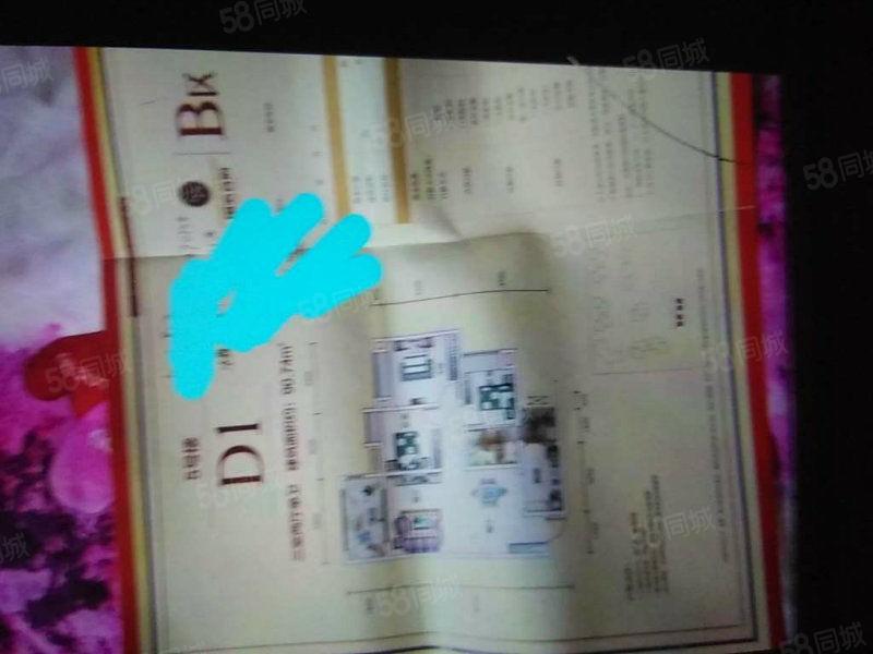 南门国滨首府毛坯电梯3房花园小区