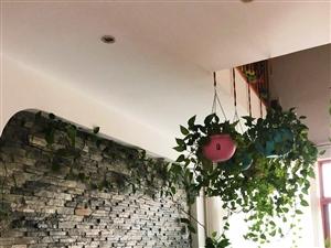 三亚海航城3室2厅2卫118平米带阁楼