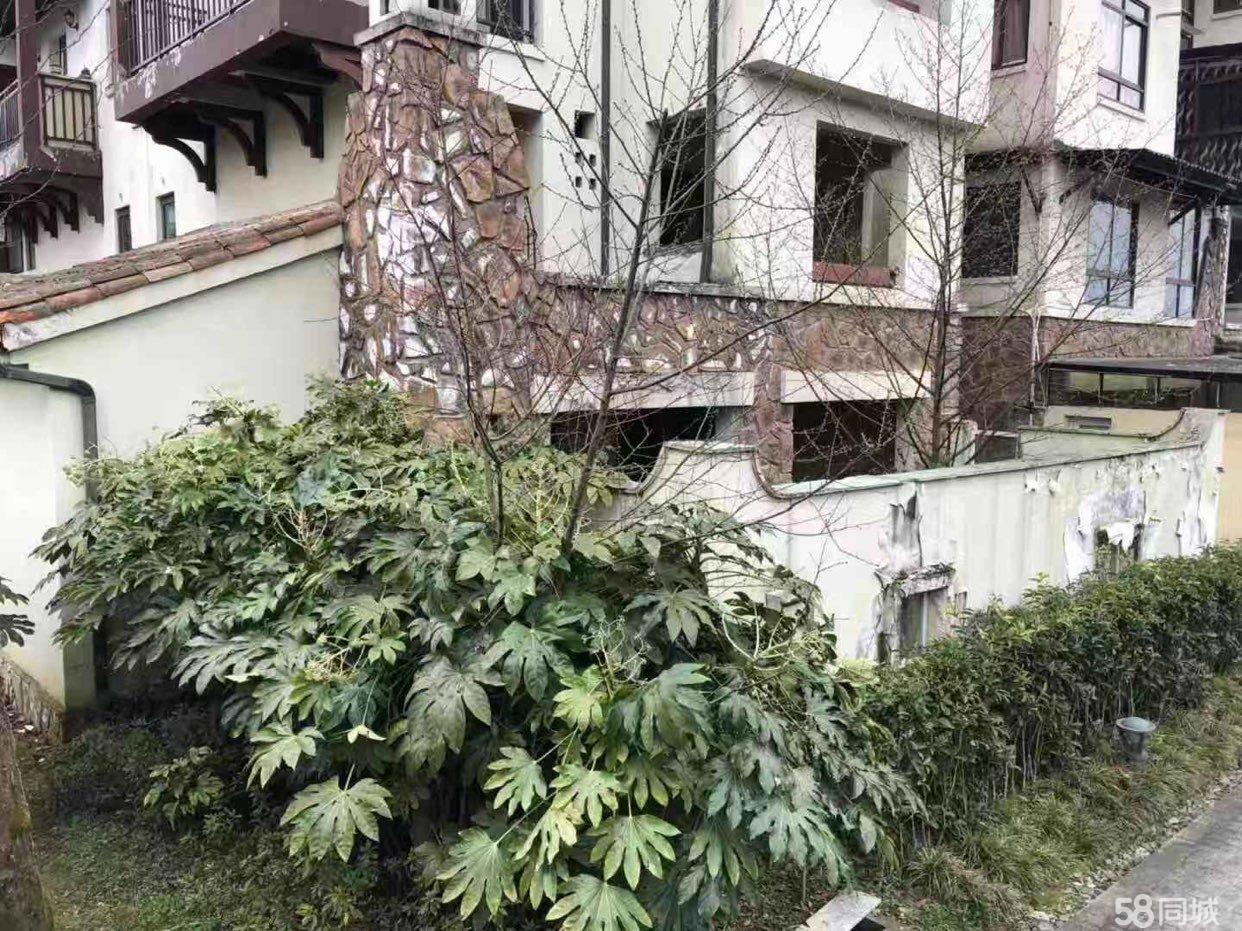 武隆仙女山品质小区花漾山谷一楼带花园