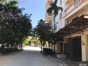 三亚田园公寓2房2厅106平68万超低价出售