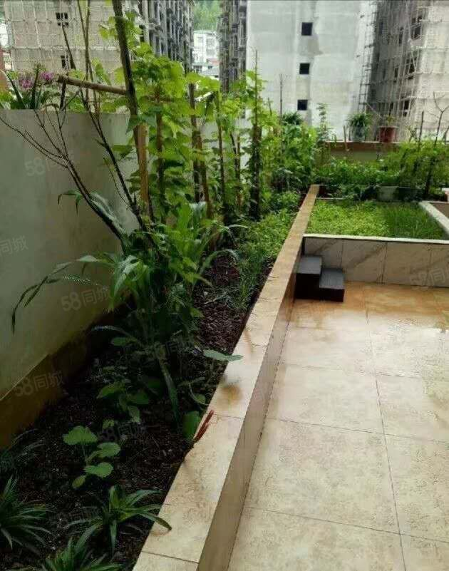 电梯房带花园使用面积140平可多用化另有70平露天平台可煮茶