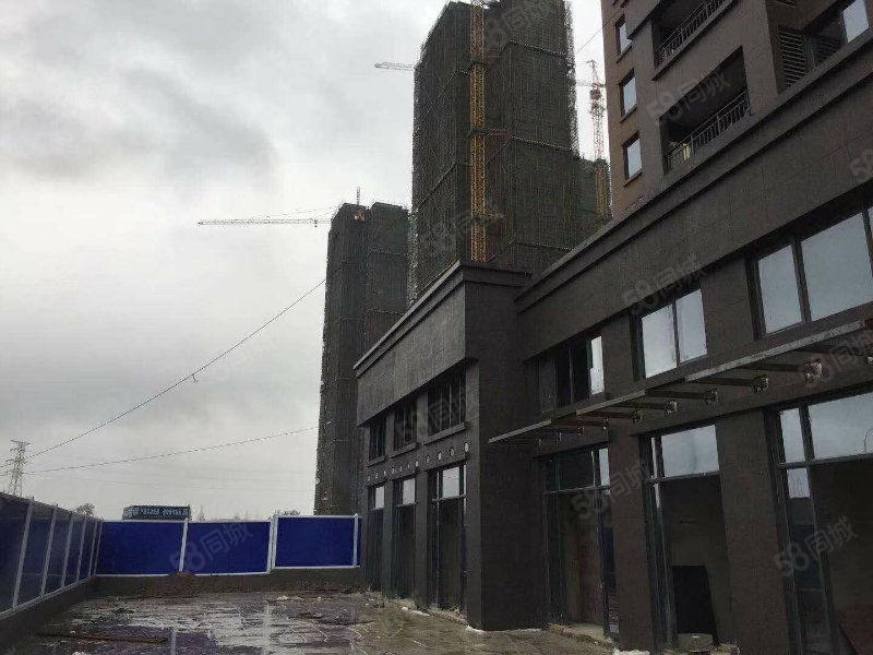 武汉发展大道长江凯旋城商铺长江新城区核心位置