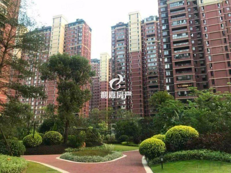 红树林、标准四房、106+18平、中间楼层、楼玩位置!
