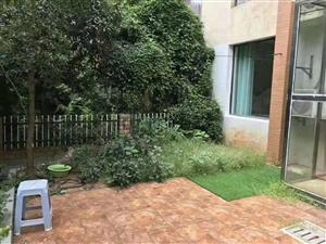 加州阳光1楼带大花园全新精装修只卖白菜价啦