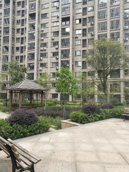 紫金路天和国际公馆毛坯房124平方3房2厅2卫
