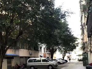 首付18万入住3房2厅2卫全新装修利群小学学位房有小区大杂间