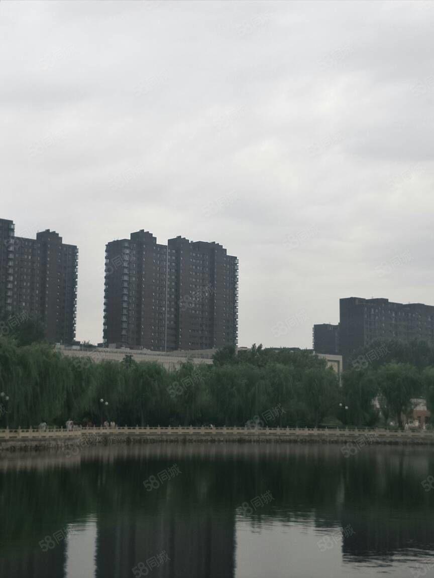 尚东城通透4居室8层双卫三卧朝阳客厅朝阳