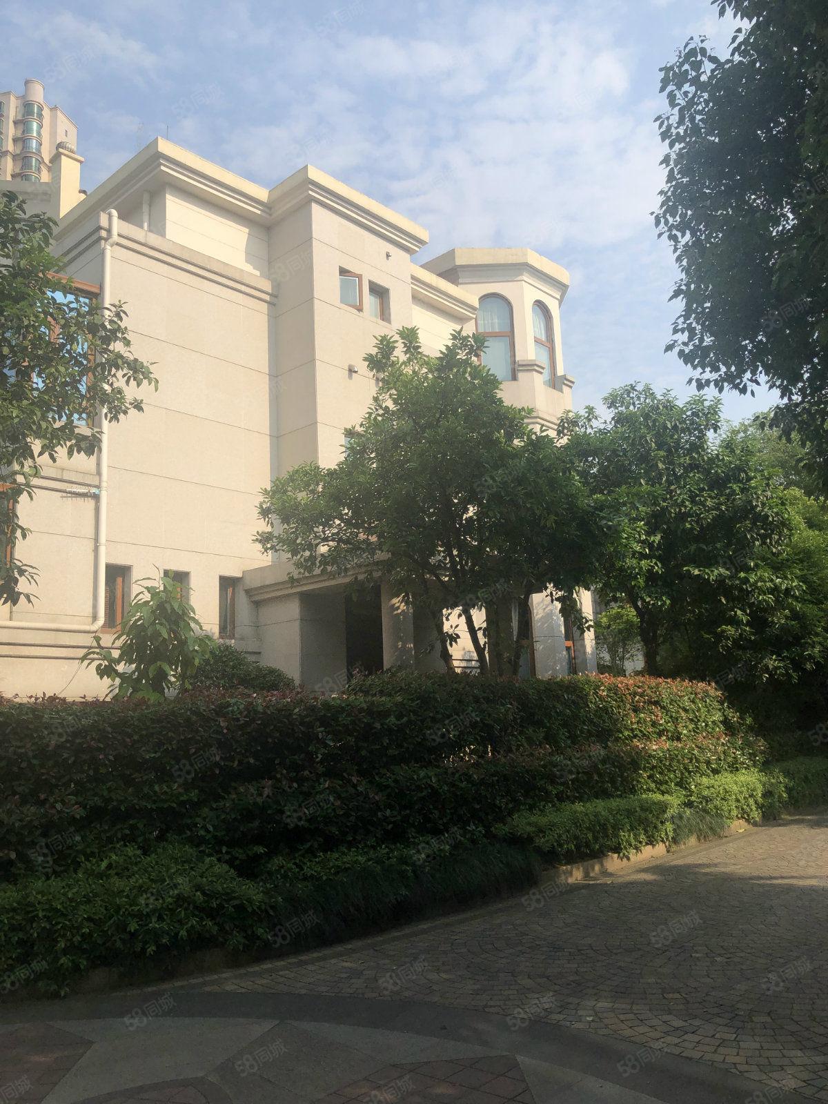 青山湖高檔別墅區恒茂湖濱品質樓盤素質住戶帶大院子