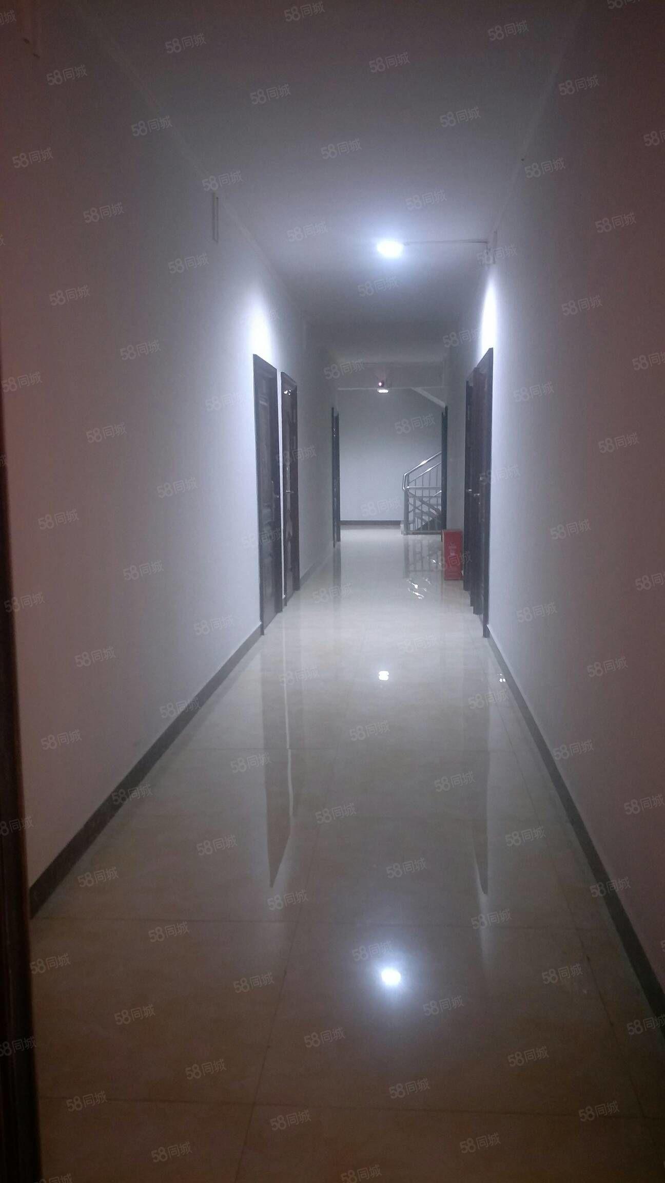 金码头电梯房一室一厨一卫全装修带热水器空调,免费无线网,