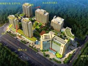 高端电梯公寓可直接更名因房东资金周转急、急、急售..