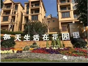 凤凰苑别墅出售+双证齐全可直接过户贷款,全小区你找不到证奇的