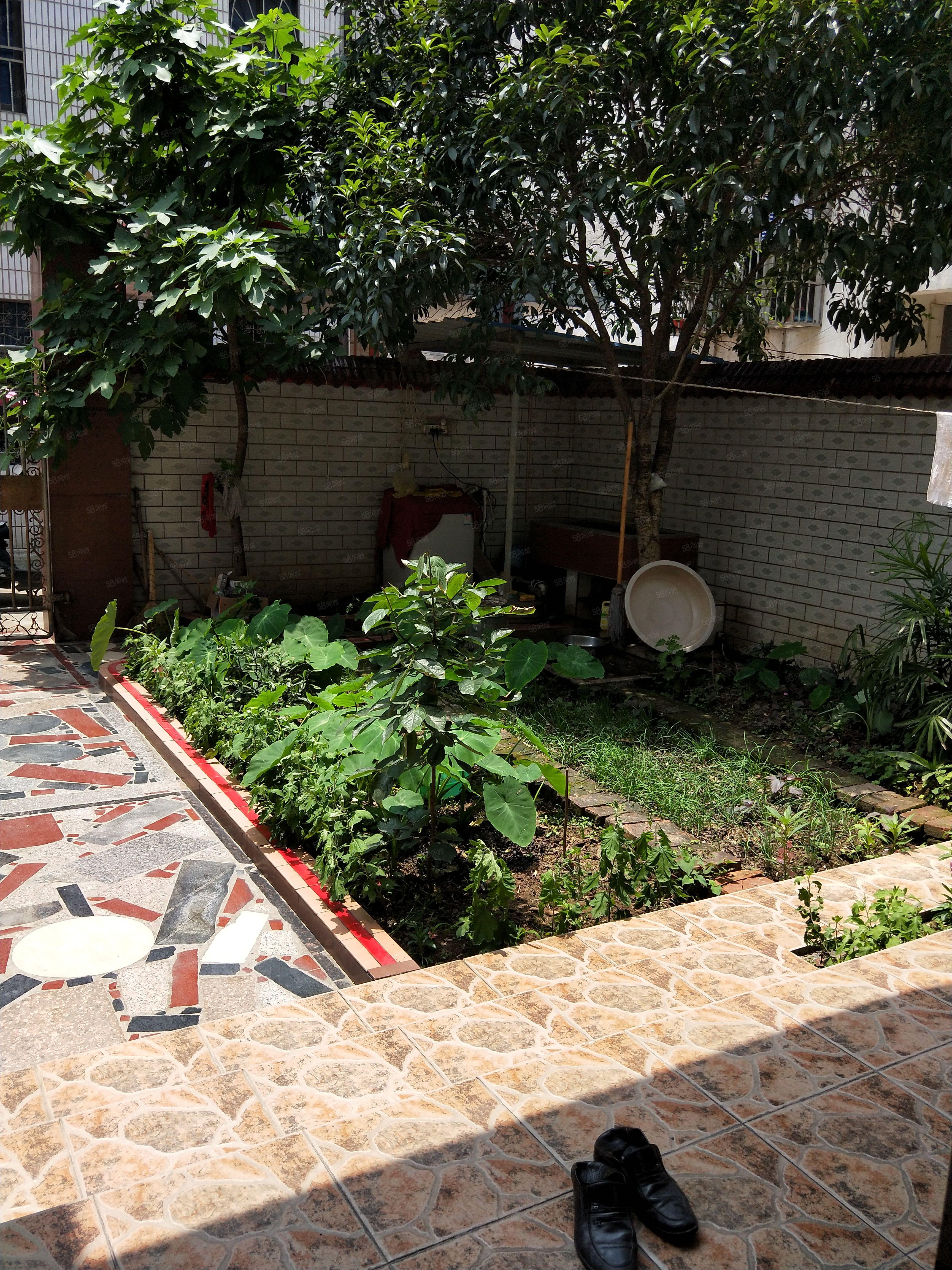 业主诚心急售!联二全框架,有天有地有花园!