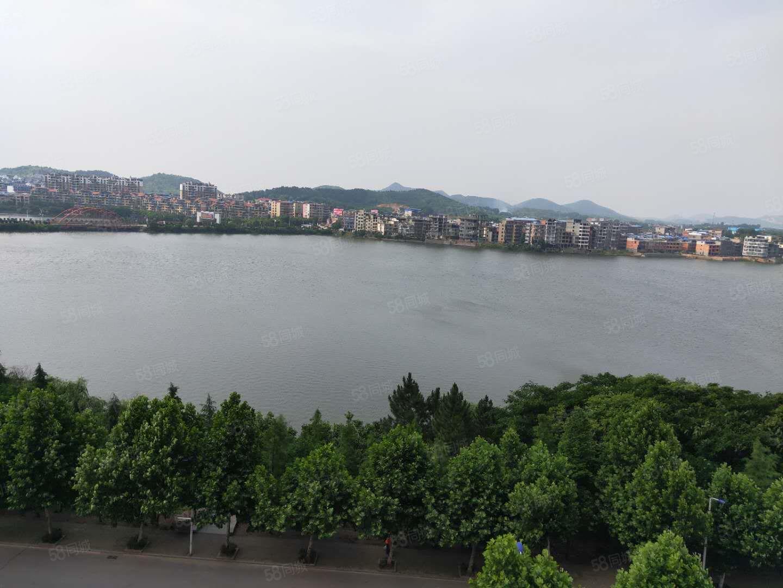 安定湖壹號特大觀景臺湖景電梯毛坯大三房