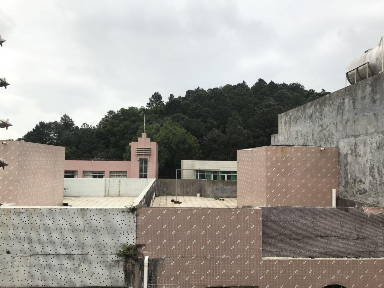 阳东龙日路整栋私宅澳门二十一点游戏地面50平方4层初次澳门二十一点游戏办公宿舍优选